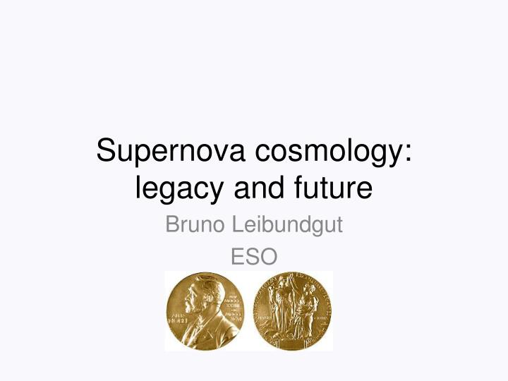 Supernova cosmology legacy and future