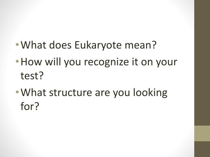What does Eukaryote mean?
