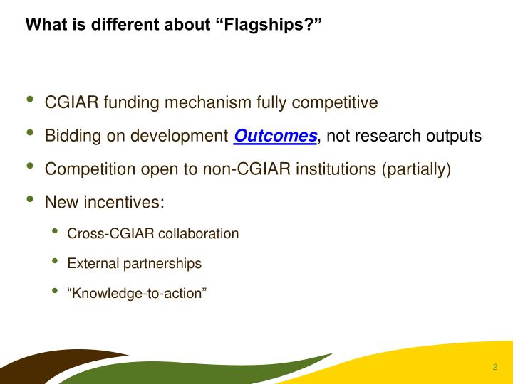 "What is different about ""Flagships?"""