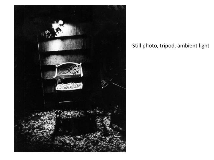 Still photo, tripod, ambient light
