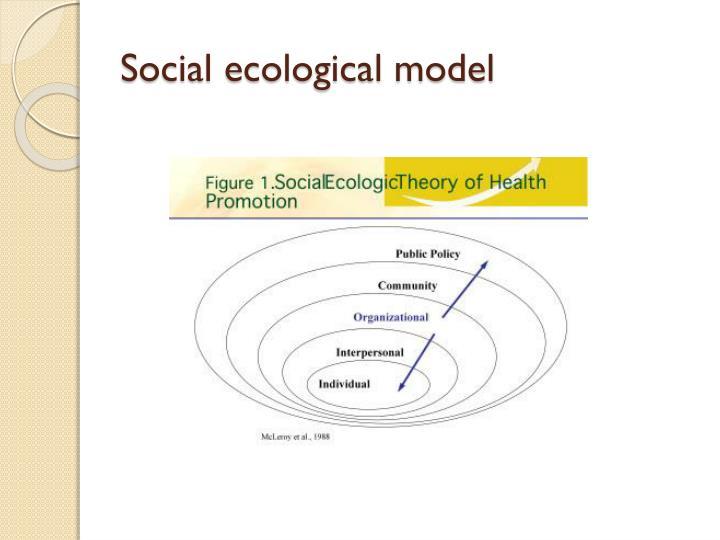 Social ecological model
