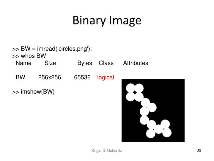 Binary Image