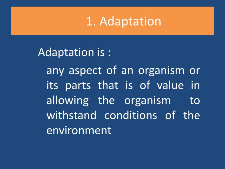1 adaptation