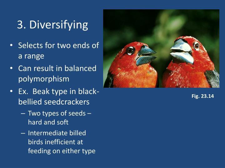 3. Diversifying