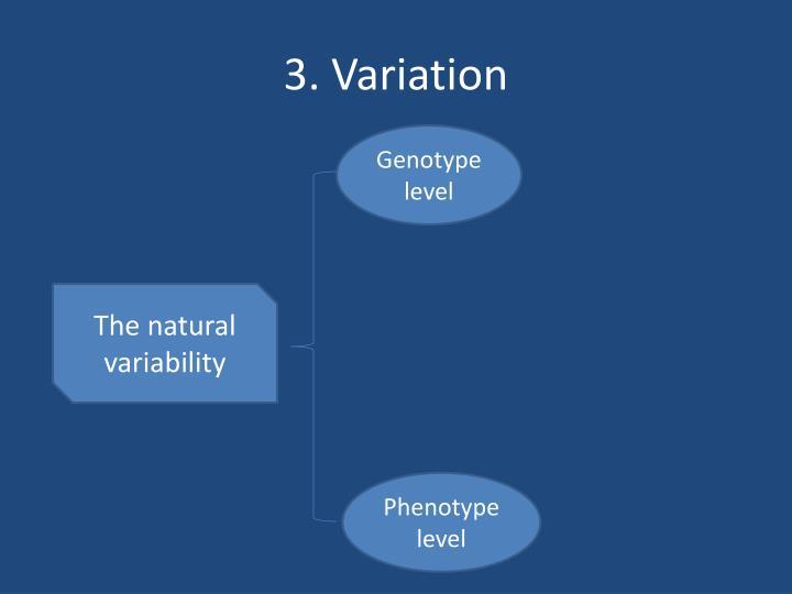 3. Variation