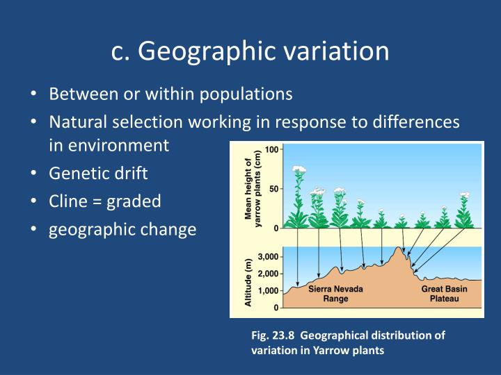 c. Geographic variation
