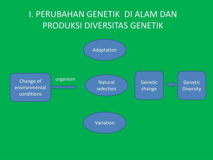 I. PERUBAHAN GENETIK  DI ALAM DAN PRODUKSI DIVERSITAS GENETIK