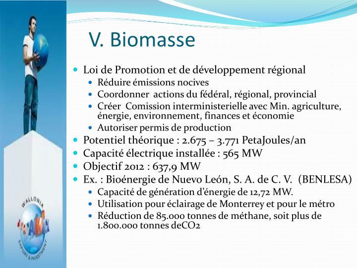 V. Biomasse