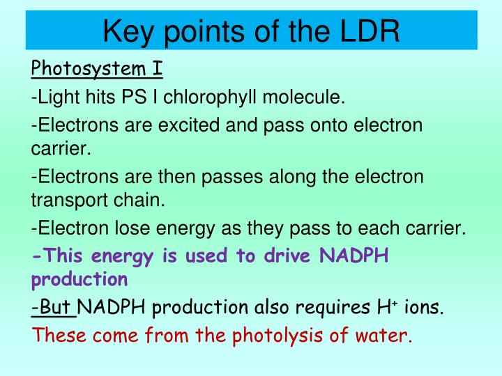 Key points of the LDR