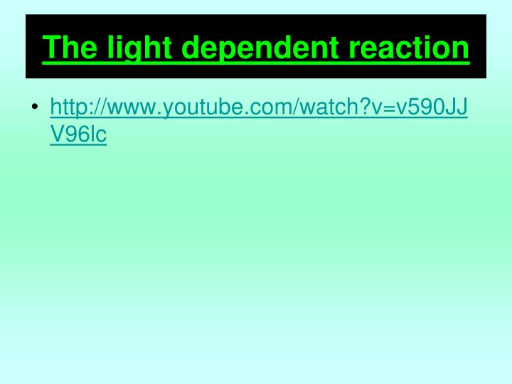 The light dependent reaction