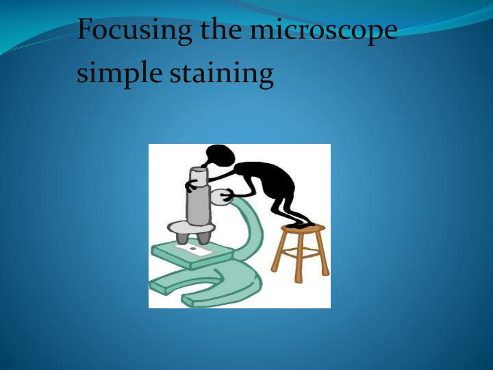 Focusing the microscope simple staining