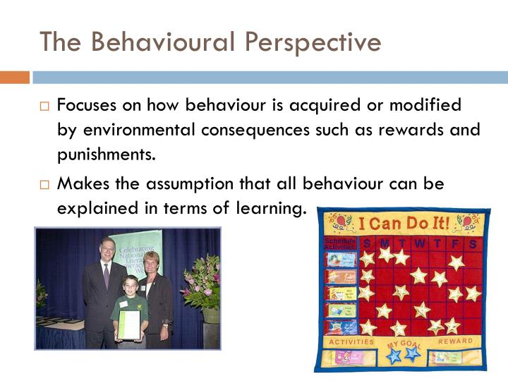 The Behavioural Perspective