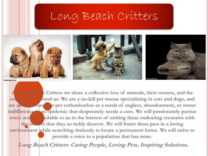 At Long Beach Critters we share a collective love of animals, their owners, and the community around...
