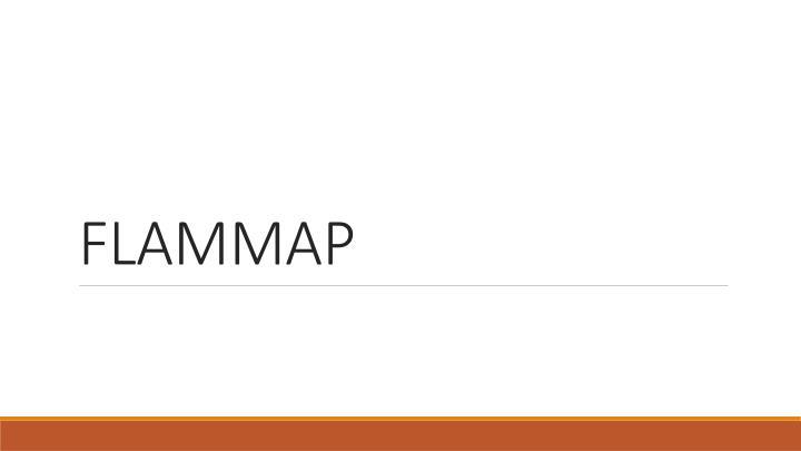 FLAMMAP