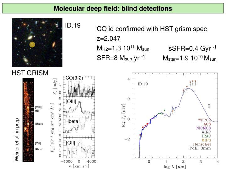 Molecular deep field: blind detections