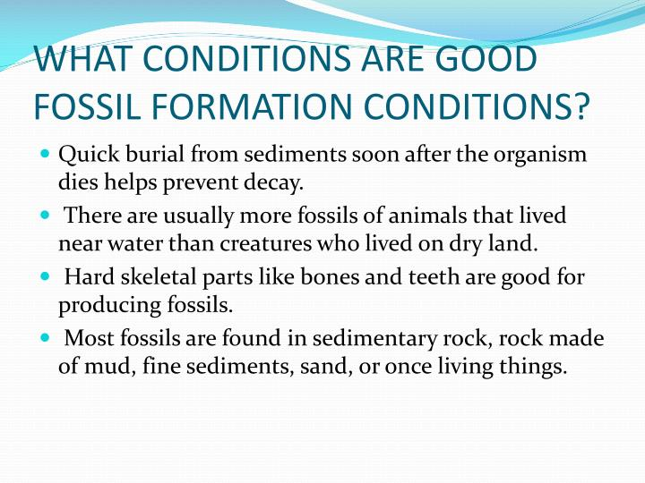 WHAT CONDITIONS ARE GOOD FOSSIL FORMATION CONDITIONS?