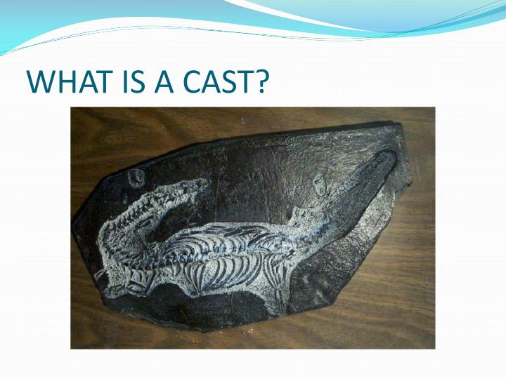 WHAT IS A CAST?
