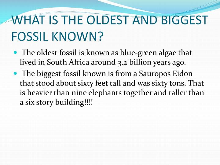 WHAT IS THE OLDEST AND BIGGEST FOSSIL KNOWN?