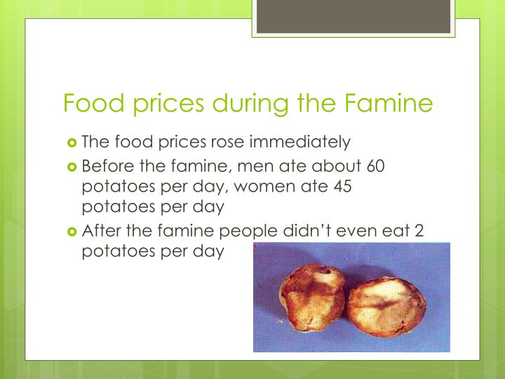 Food prices during the Famine