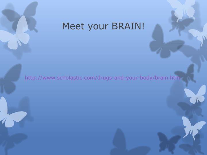 Meet your BRAIN!