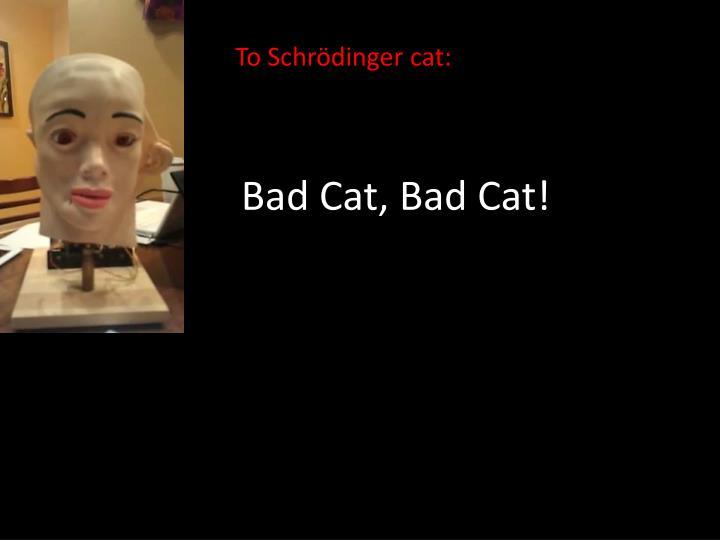 Bad Cat, Bad Cat!