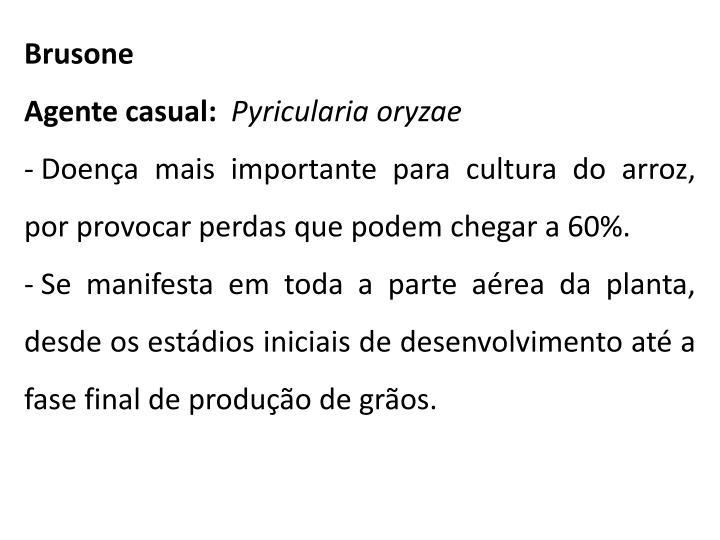 Brusone