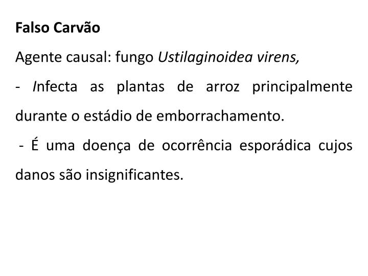Falso Carvão