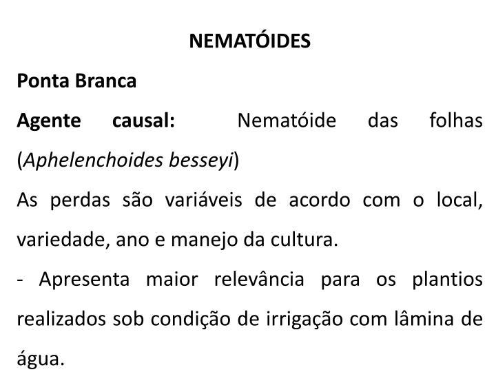 NEMATÓIDES