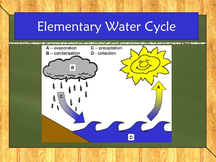 Elementary Water Cycle