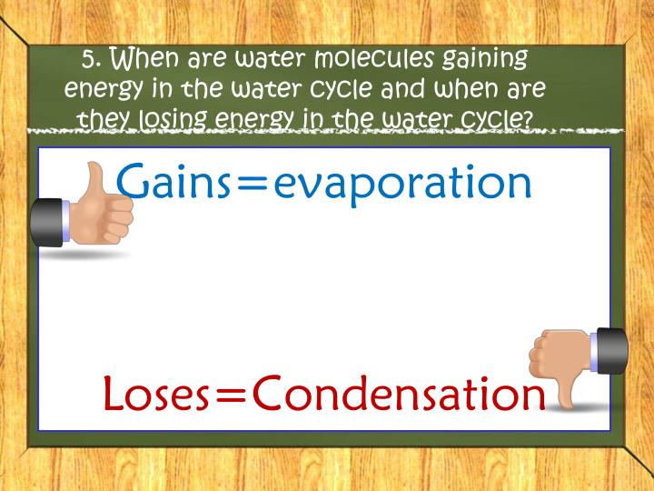 5. When are water molecules gaining energy in the water cycle and when are they losing energy in the water cycle?