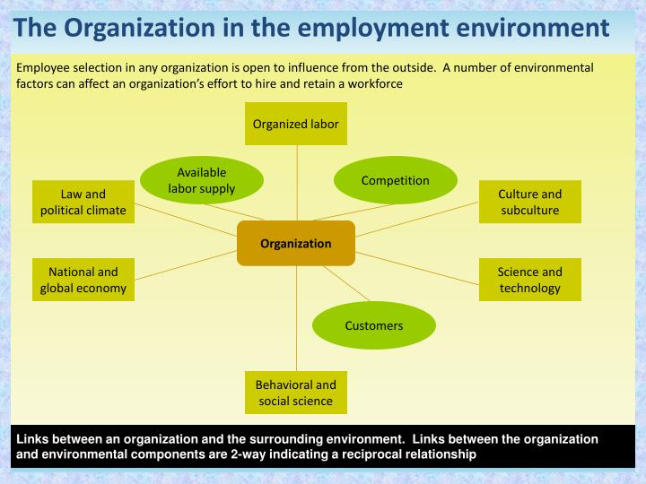 The Organization in the employment environment