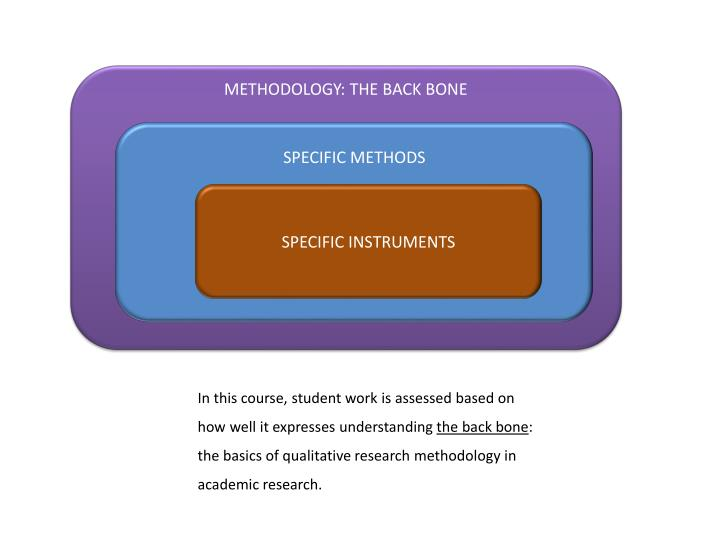METHODOLOGY: THE BACK BONE