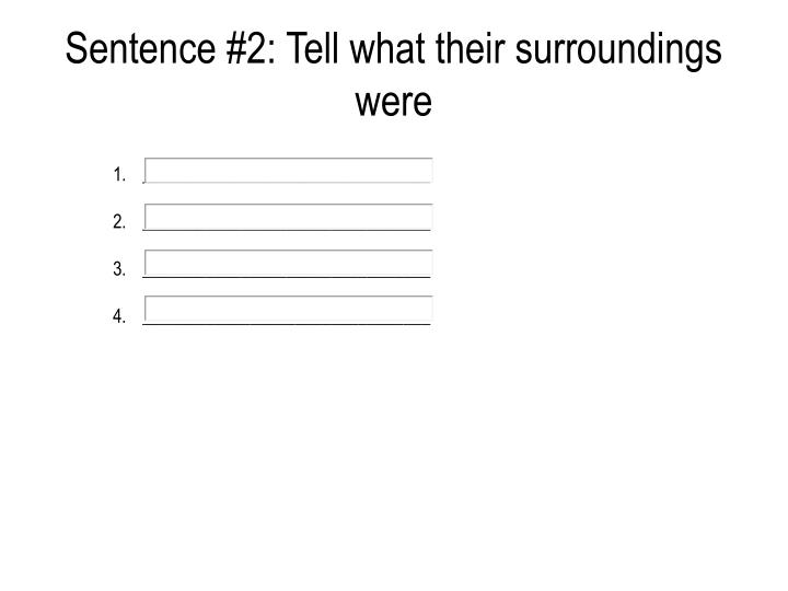 Sentence #2: Tell what their surroundings were