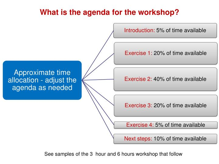 What is the agenda for the workshop?