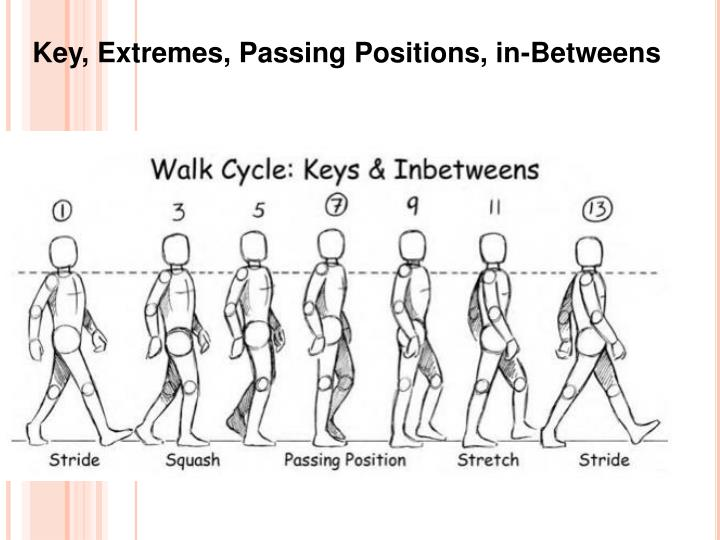 Key, Extremes, Passing Positions, in-Betweens