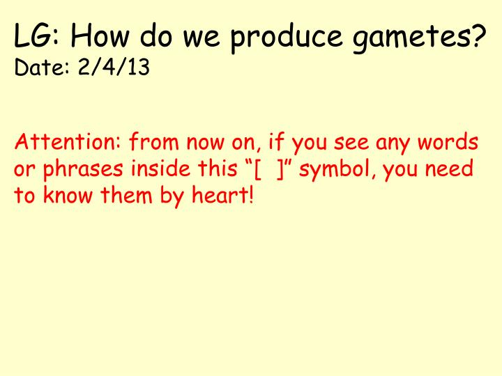 Lg how do we produce gametes date 2 4 13
