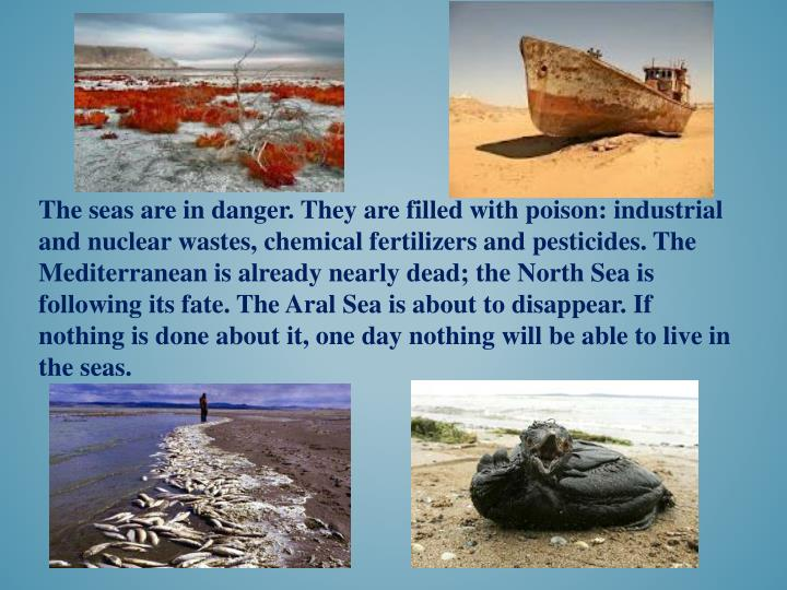 The seas are in danger. They are filled with poison: industrial and nuclear wastes, chemical fertilizers and pesticides. The Mediterranean is already nearly dead; the North Sea is following its fate. The Aral Sea is about to disappear. If nothing is done about it, one day nothing will be able to live in the seas.