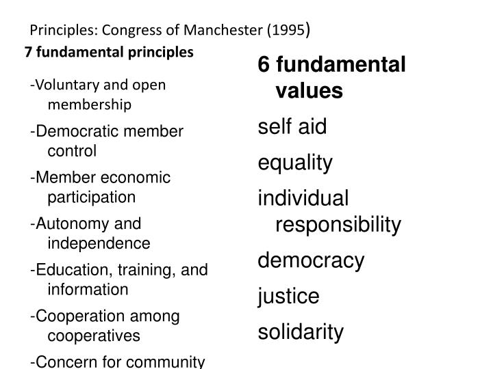 Principles: Congress of Manchester (1995