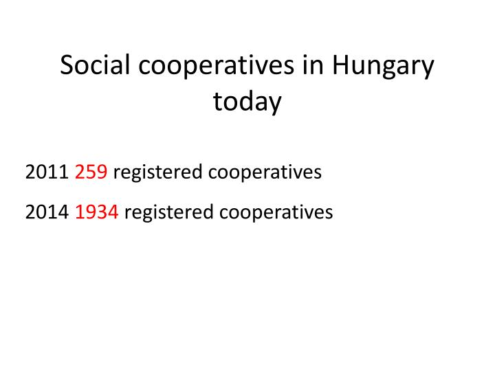 Social cooperatives in Hungary today