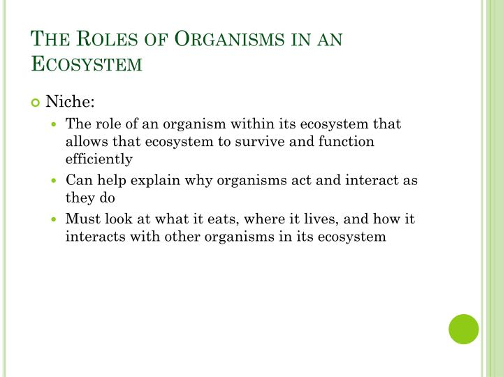 The roles of organisms in an ecosystem