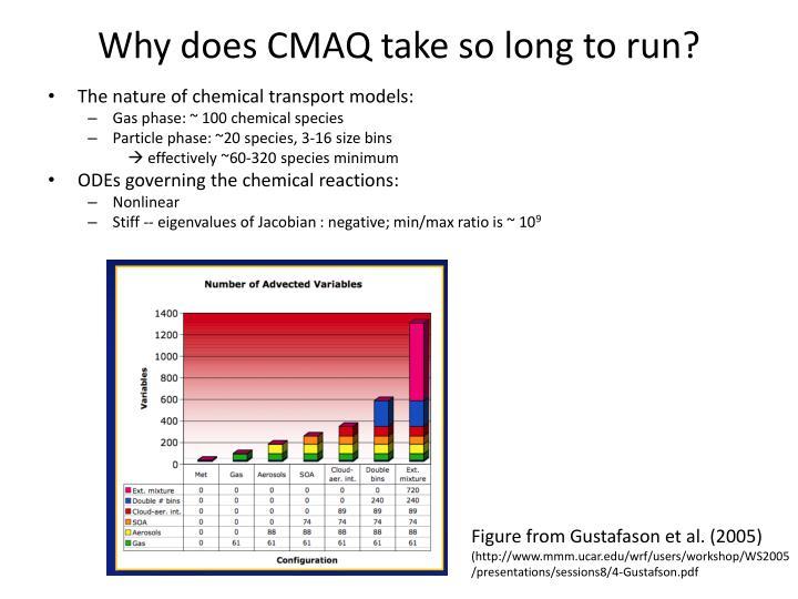 Why does CMAQ take so long to run?