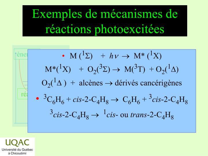 Exemples de mécanismes de réactions photoexcitées