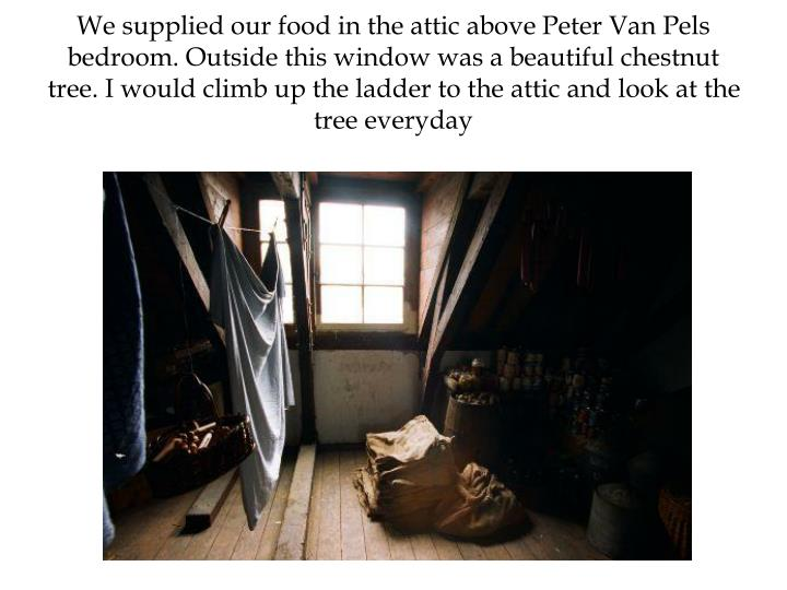 We supplied our food in the attic above Peter Van Pels bedroom. Outside this window was a beautiful chestnut tree. I would climb up the ladder to the attic and look at the tree everyday