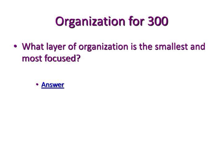 Organization for 300