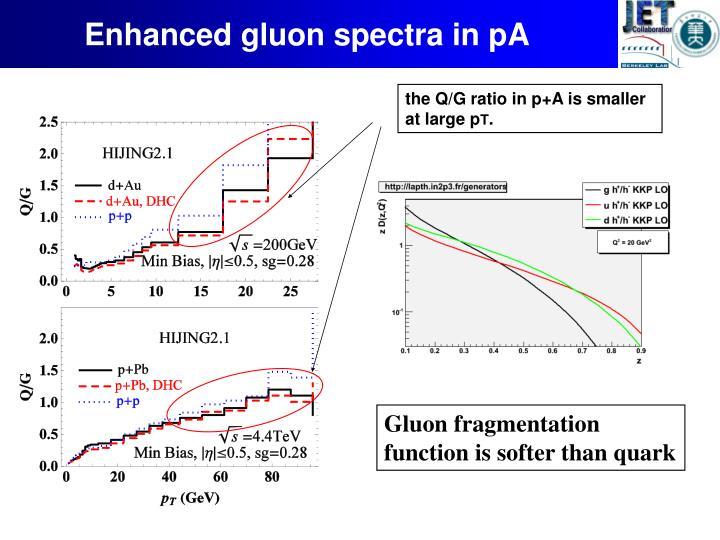 Enhanced gluon spectra in