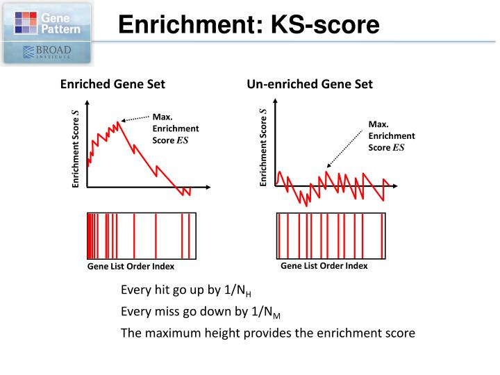 Enrichment: KS-score