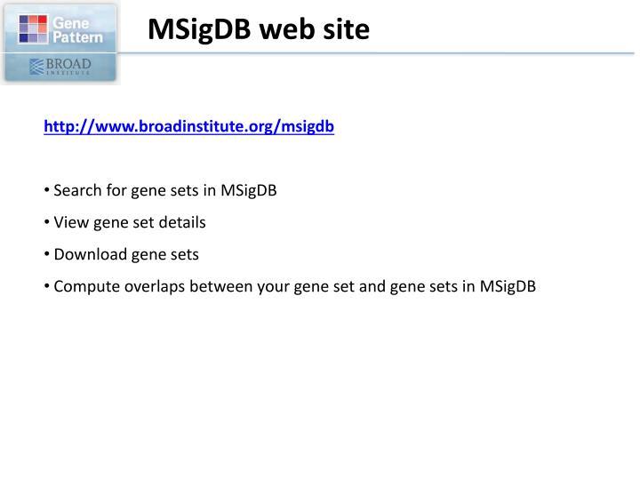 MSigDB web site