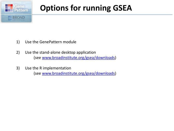 Options for running GSEA