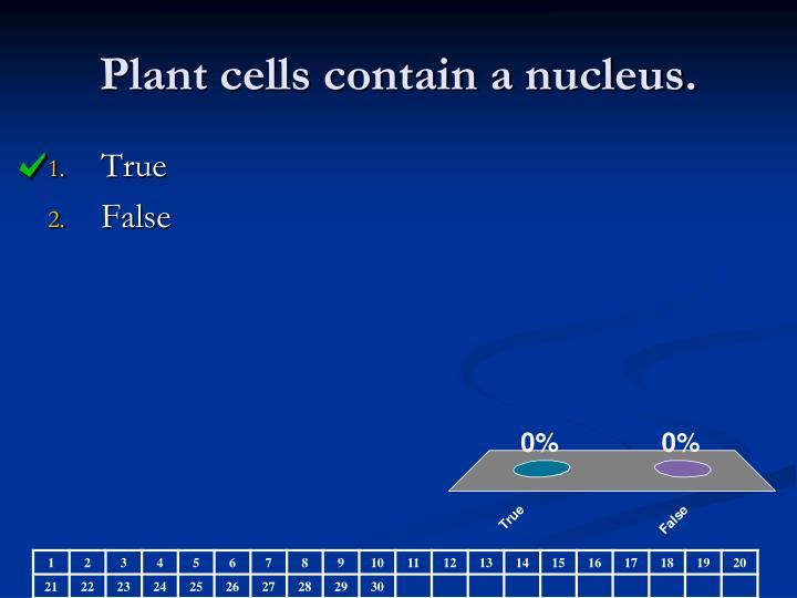 Plant cells contain a nucleus.
