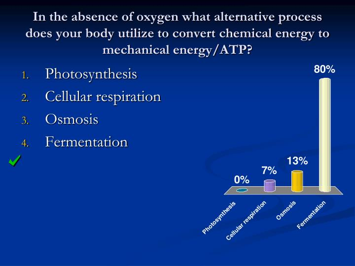 In the absence of oxygen what alternative process does your body utilize to convert chemical energy to mechanical energy/ATP?